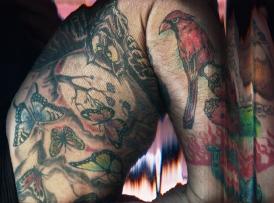 BennettAlison-ShiftingSkin-owl-1024